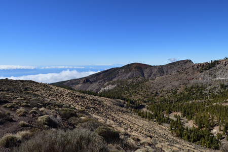 View of the mountains with low cloud in the background in Teide national park in Tenerife