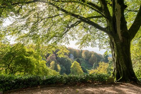View of the temple of Apollo from a vantage point at Stourhead gardens in Wiltshire. Stock fotó