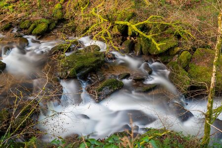 High angle view of the river flowing through the woods at Watersmeet in Devon 写真素材