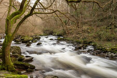 Long exposure of the river flowing through the woods at Watersmeet in Exmoor national park