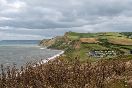 Landscape photo of Thorncombe Beacon on the Jurassic coast in Dorset