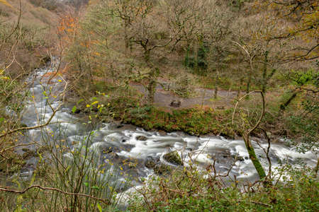 Long exposure of the East Lyn river flowing through the woods at Watersmeet in Exmoor National Park in autumn
