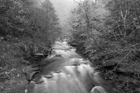 Long exposure of  the East Lyn river flowing through the woods at Watersmeet in Exmoor National Park 写真素材