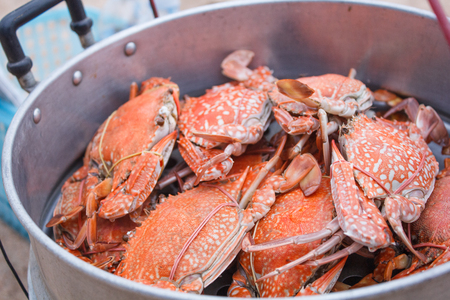Crab in Steamer