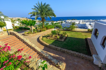 bordering: Panorama of white city at a tropical holiday resort set in neat manicured lawns with ornamental shrubs bordering on a small road, Egypt