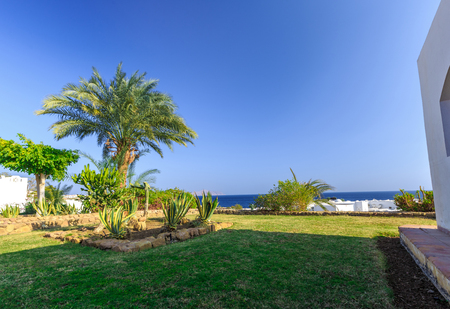 bordering: Tropical holiday resort set in neat manicured lawns with ornamental shrubs bordering on a small road, Egypt