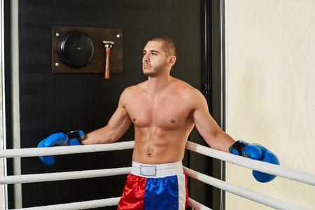 Boxer man in sports shorts and blue gloves standing in a corner of the ring Stock Photo
