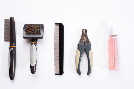 Acessories for the grooming of the dog. Combs and brushes for dogs. Top view Stock Photo