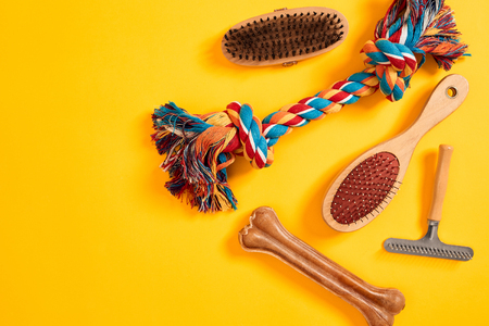 Accessories for the grooming of the dog. Combs and brushes for dogs. Top view