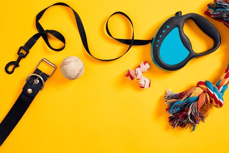 Toys -multi coloured rope, ball, leather leash and bone. Accessories for play and training on yellow background top view