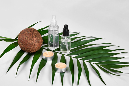 Coconut with jars of coconut oil and cosmetic cream on white background. Cosmetic lotion with green leaf and coconut. Still life. Copy space Stock Photo