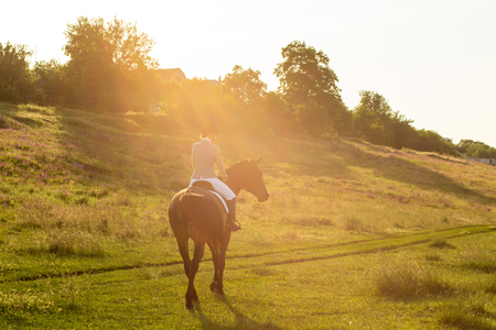 Young woman riding a horse on the green field. Sun flare Reklamní fotografie