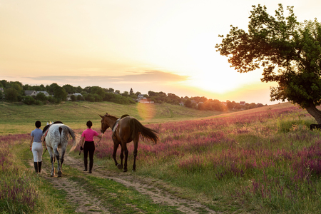 Two woman and two horses outdoor in summer happy sunset together nature Stock Photo