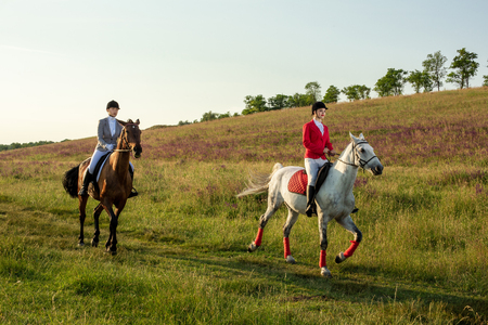 Horseback riders. Two attractive women ride horses on a green meadow
