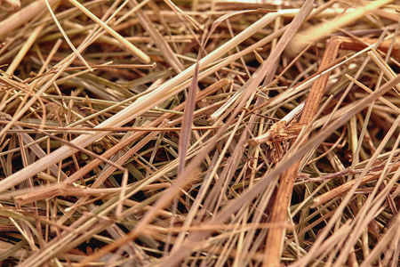 Close-up of a haystack for rural background Foto de archivo
