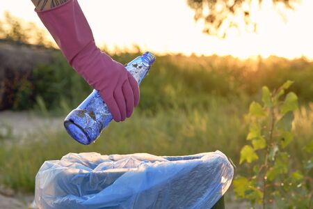 Volunteer in purple gloves is walking with garbage bag along a green zone of a dirty beach of the river and cleaning up trash, used glass bottles. People and ecology. Riverside pollution. Preservation of nature. Close-up shot.