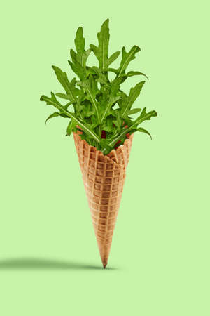 Fresh arugula leaves in a wafer cone against light green background. Healthy nutrition, seasonal vegetables harvest. Close up, copy space 版權商用圖片 - 151849899