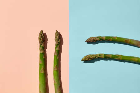 Four green raw asparagus stalks on blue and pink background. Concept of healthy nutrition, food and seasonal vegetables harvest. Close up, copy space