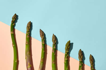 Green asparagus stems laid out from large to small size on colorful background. Healthy nutrition, seasonal vegetables harvest. Close up, copy space 版權商用圖片 - 151849778