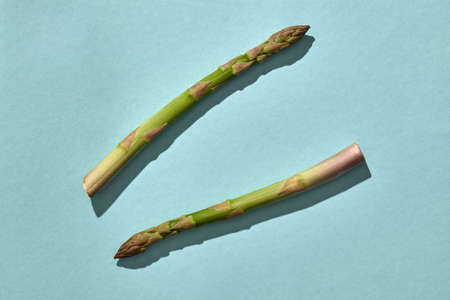 Two fresh organic asparagus stems on blue background. Concept of healthy food and crop of spring vegetables. Close up, copy space 版權商用圖片