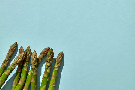 Green raw asparagus spears on blue background. Concept of healthy food and crop of spring vegetables. Close up, copy space