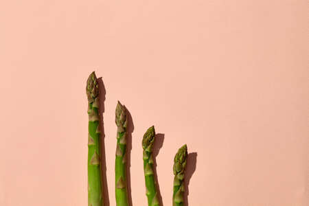 Uncooked green asparagus spears on pink background. Concept of healthy nutrition, food and seasonal vegetables harvest. Close up, copy space