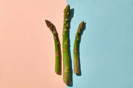 Three fresh organic asparagus stems on pink and blue background. Concept of healthy nutrition, food and seasonal vegetables harvest. Close up