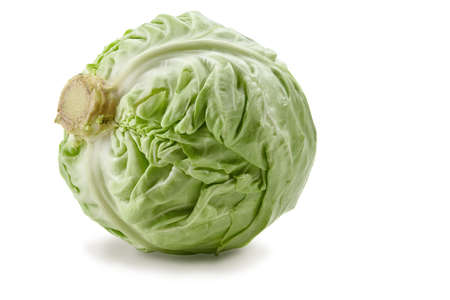 Fresh white-headed cabbage isolated on white background. Ripe vegetable, summer harvest. Close up, copy space