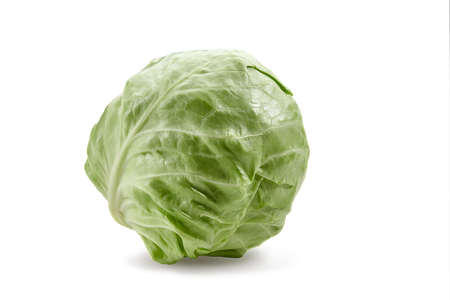 White-headed cabbage isolated on white background. Smooth-leafed vegetable, fresh harvest. Close up, copy space