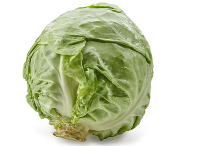 Whole, pale green cabbage isolated on white studio background. Smooth-leafed vegetable, summer harvest. Close up, copy space