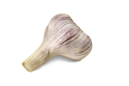 Unpeeled bulb of ripe garlic isolated on white background. Vegetable, spice. Fresh summer harvest. Close up, copy space 版權商用圖片