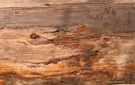 weathered: weathered plank Stock Photo
