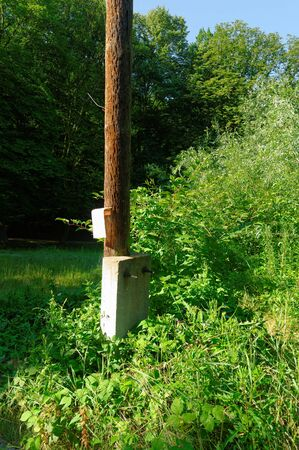 scrub grass: old wooden electrical pole in the scrub Stock Photo