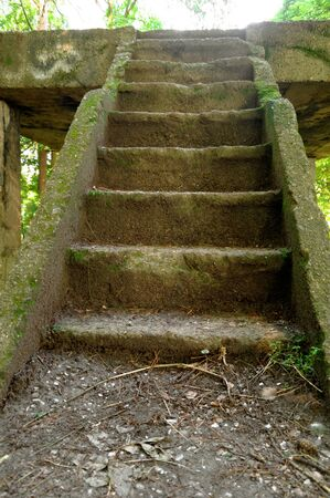 ruined: old ruined concrete stairs on the wilderness