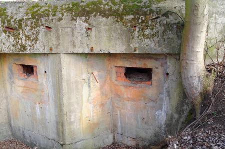 loopholes: loopholes in the old devastated concrete bunker