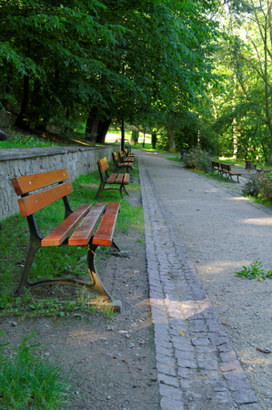 row of empty benches beside the park alley in perspective view 写真素材