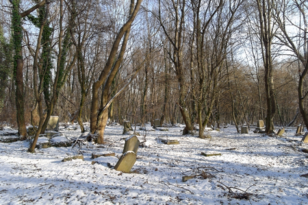 old Jewish cemetery at the winter sunny day