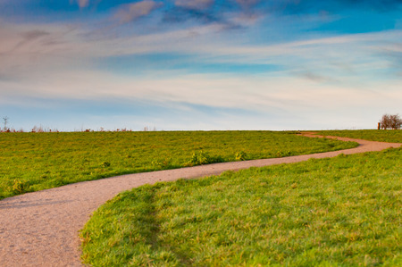 자연 보호구에서 잔디 필드를 통해 경로를 권선