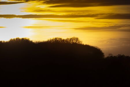 silhoutted: Yellow Sun setting over silhoutted trees