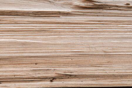 splinter: Wood grain