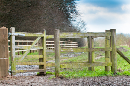 muddy: Open gate to a muddy countryside path
