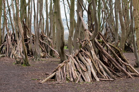 den: Hand made stick den in a forest clearing Stock Photo