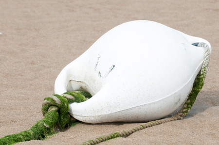 buoy: White buoy lying in the yellow sand of a beach Stock Photo