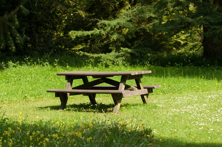 seating area: Seating area to rest in the woodland clearing Stock Photo