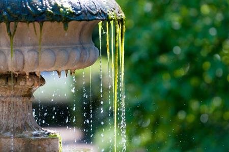 garden fountain: Close up of cool refreshing water splashing from a garden fountain Stock Photo