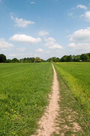 ramble: wide angle view of a country footpath through a field Stock Photo