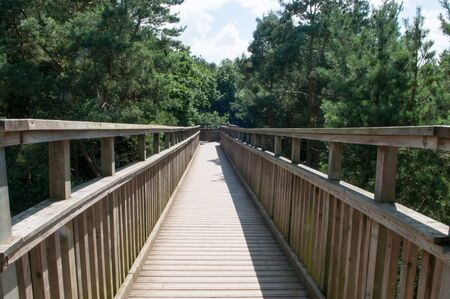 high up: Wooden footbridge crossing high up over a forest. Looking down from above the trees Stock Photo
