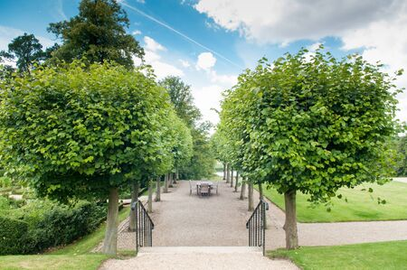 hedges: Formal garden entrance with shaped hedges and trees Stock Photo