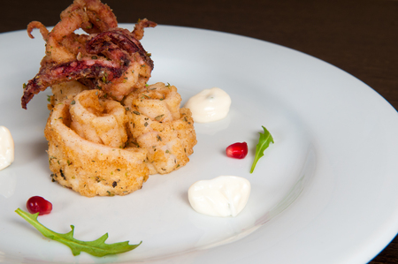 freshly prepared: Calamari freshly prepared seafood on a white plate
