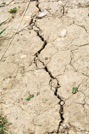 Dry earth, dried out cracked soil from hot temperature change
